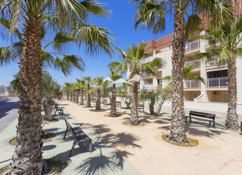 Penthouse - Seconde main - Cabo Roig - Cabo Roig